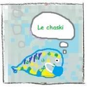 Le chaski (16.9kB) Lien vers: https://lped.info/?ChaskiFilDeLeau